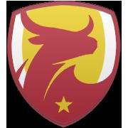 FC RB Salzburg